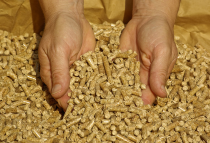 Pellets, les granuls de bois